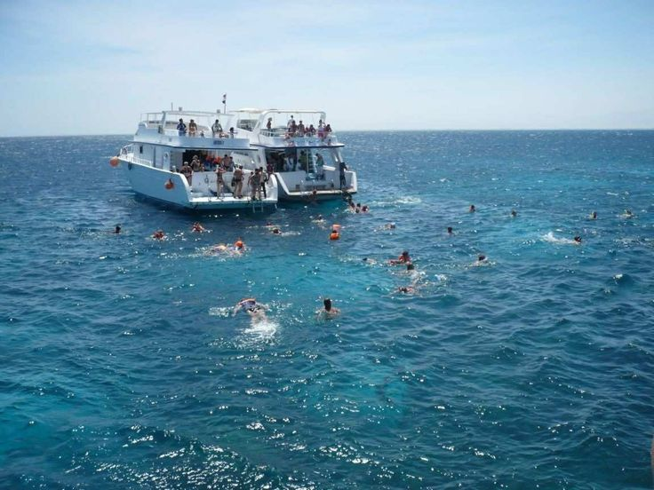 Enjoy the snorkeling in Cheap Holidays to Egypt / http://www.shaspo.com/cheap-holidays-to-egypt-travel-packages / in the red sea and other water activities