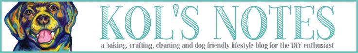 Got A Stinky Dog? This DIY Dry Dog Shampoo Can Help - Kol's Notes