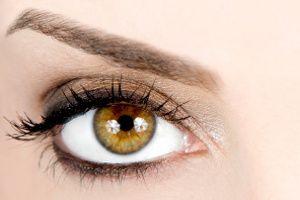 Bronze Makeup for Amber Eyes