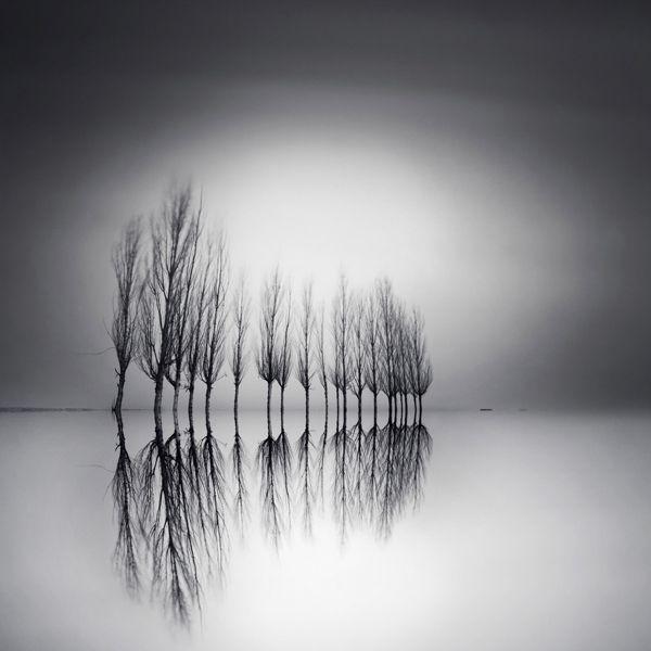 Increíbles Fotos [Blanco y Negro] - Taringa!