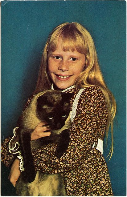 Amy Carter by the ghost of me, via Flickr  Old postcard of ex-president Jimmy Carter's daughter, holding her cat Misty Malarkey Ying Yang.