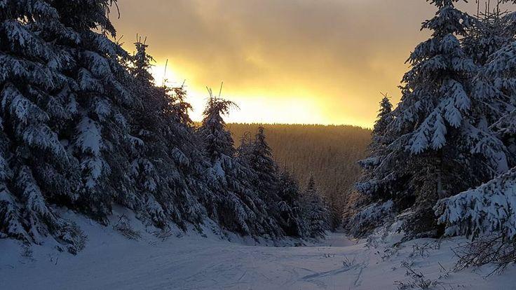 Aktualne v Destném -noční lyžování :: Ubytování Orlické hory