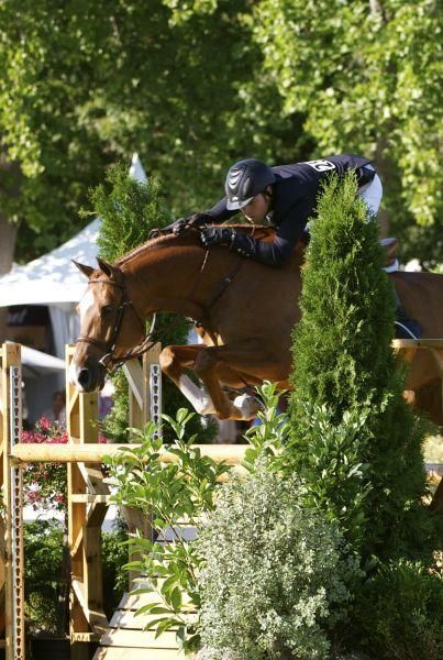 Krave Amp Nick Haness Equestrian Life Menlo Charity Horse