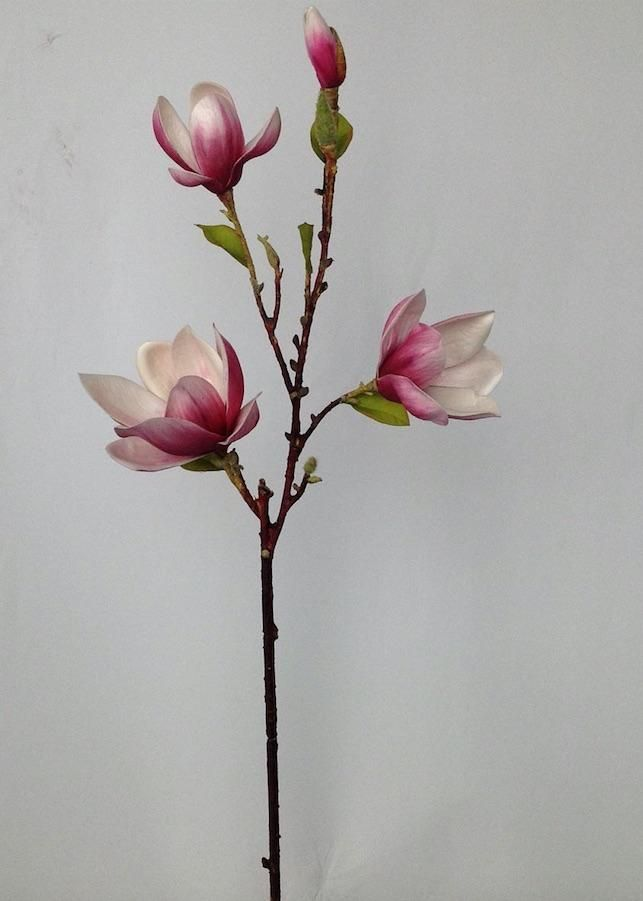Artificial Magnolia Floral Branch In Pink In 2020 Floral Branch Magnolia Flower Flower Branch