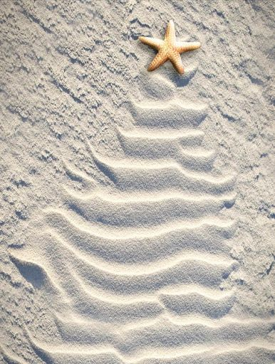 Coastal Christmas.......not quite ready to do this, but it is a bit tempting?