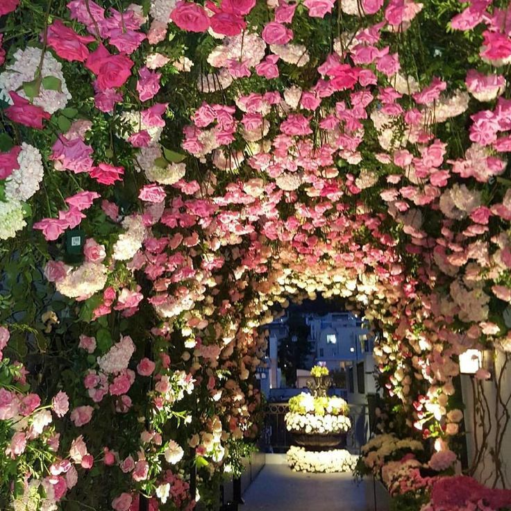 Tunnel of roses ushered guests toward the wedding ceremony #marksgarden