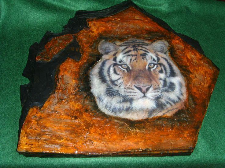 Tiger TR0001