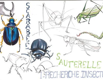 """Check out new work on my @Behance portfolio: """"Insecte robotisé"""" http://be.net/gallery/46747607/Insecte-robotis"""