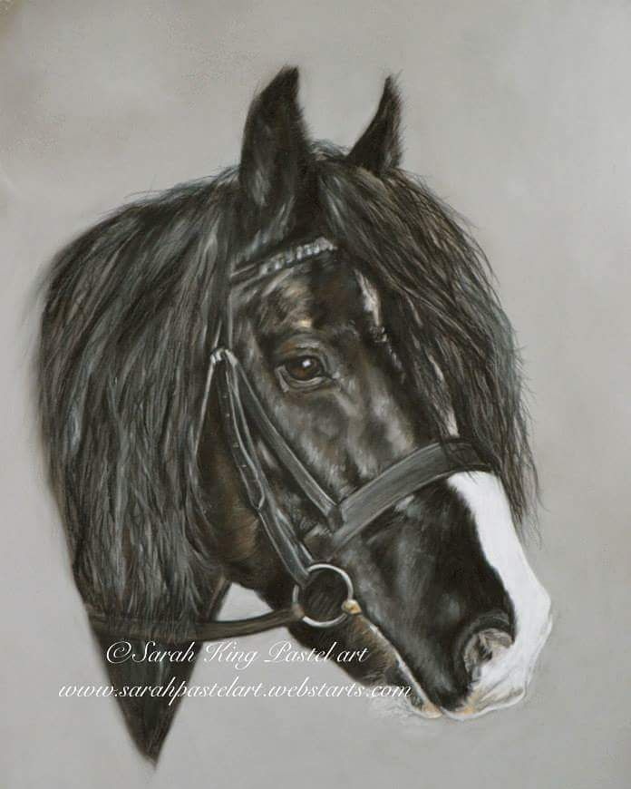 """""""Mi piace"""": 41, commenti: 3 - Sarah King (@sarah_king_art) su Instagram: """"Havent done a horse for a while here is one from last year www.sarah-king-art.co.uk  #horse #equine…"""""""