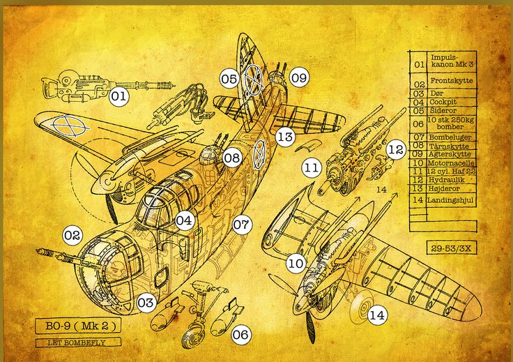 Bomber, cutaway #MaxVero