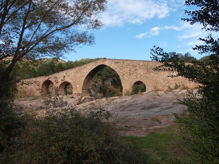El pont de Pedret. Puente medieval donde puedes ver un punto del rio Llobregat de grande belleza.