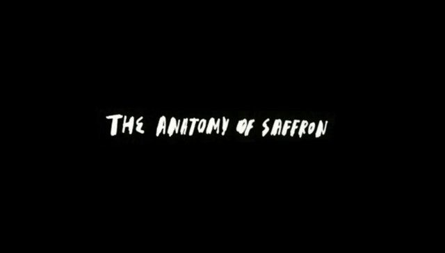 The anatomy of Saffron Brand Consultants (so strange and sooo good.) voiced by Wally Olins
