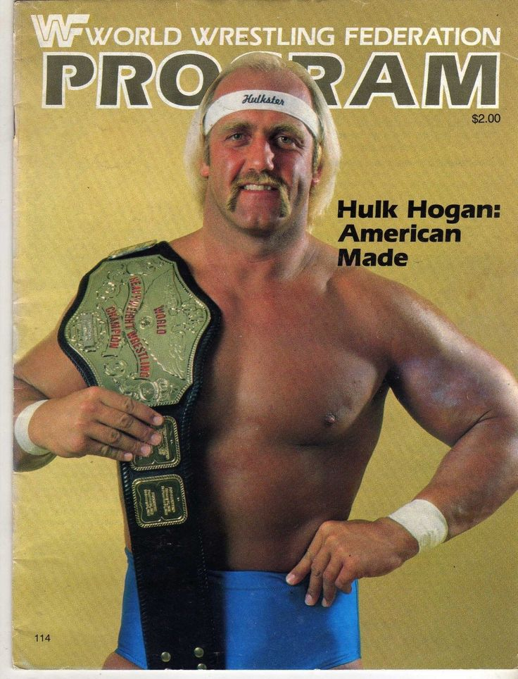 Hulk hogan films-4839