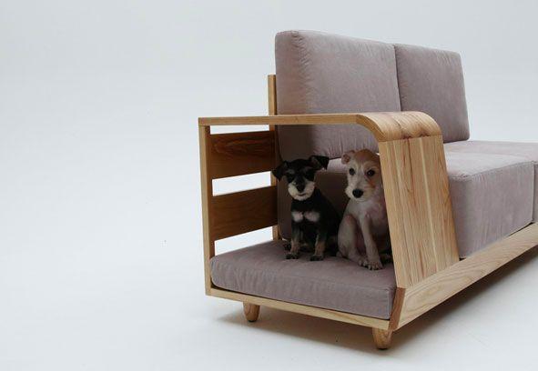 meubles-chats et chiens