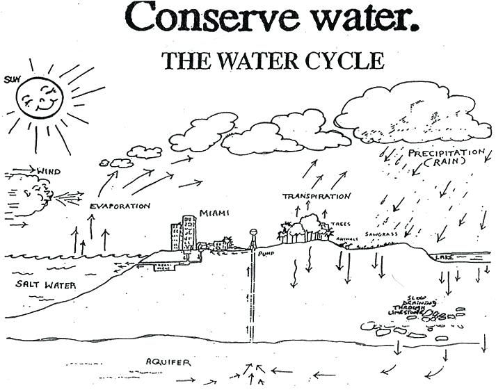 Beautiful Water Cycle Coloring Page Water Cycle Coloring Page