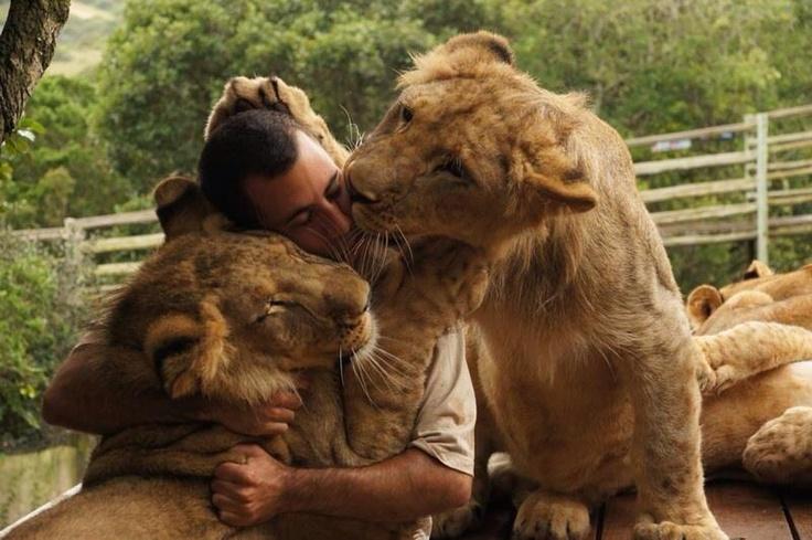 Kevin Richardson, The Lion Whisperer.