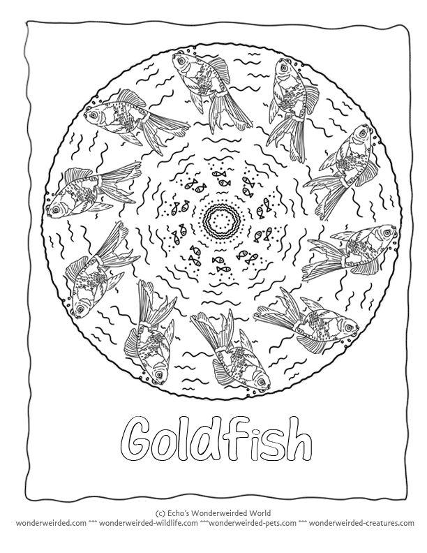 Fish Mandala Coloring page Goldfish Coloring Page 3 here