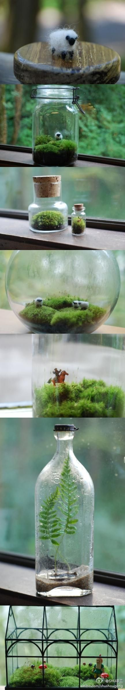 pot garden lasipurkissa lampaat
