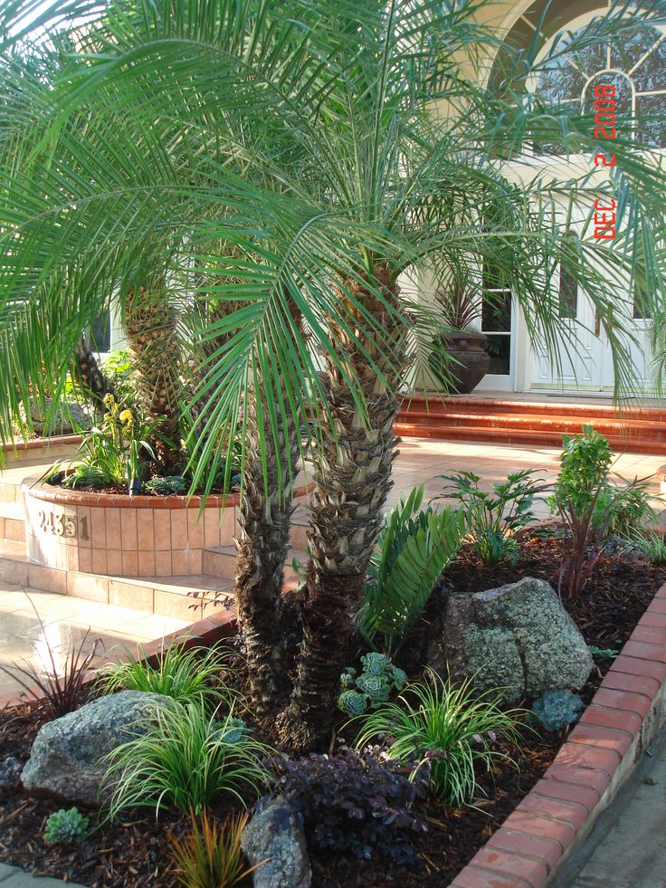 Rocks succulents and drought tolerant plants combine for Landscaping rocks los angeles