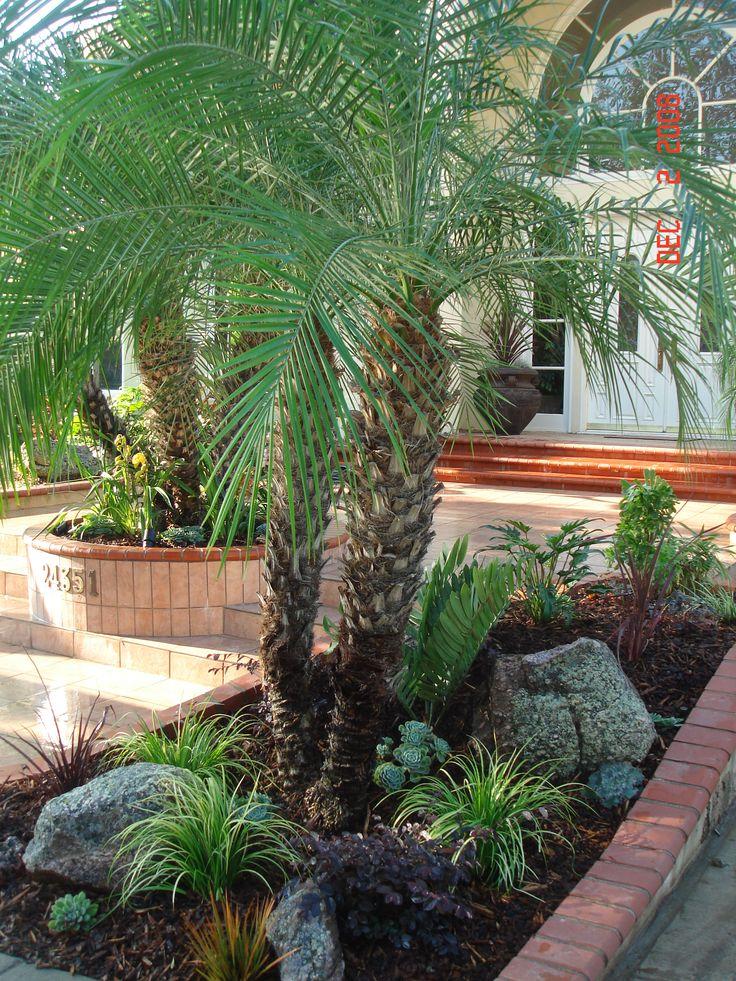 Secret Garden: ROCKS , SUCCULENTS , AND DROUGHT TOLERANT PLANTS COMBINE