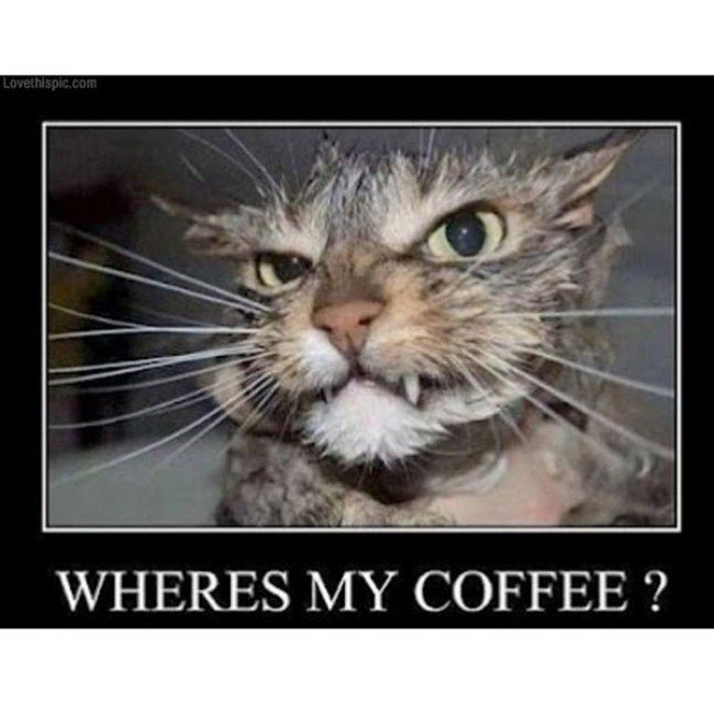 Need Coffee Funny Meme : Funny need coffee pictures pixshark images