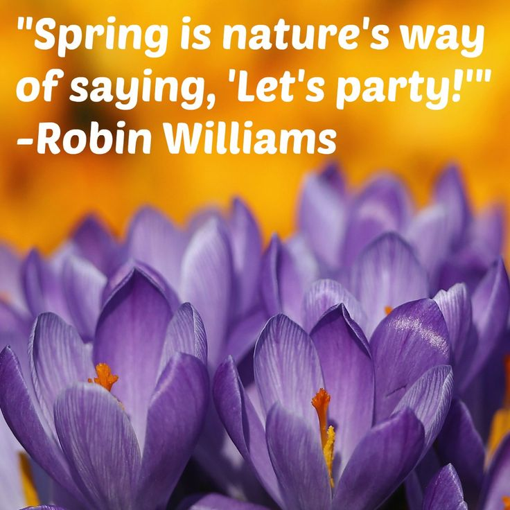 Spring is almost here quotes-5552