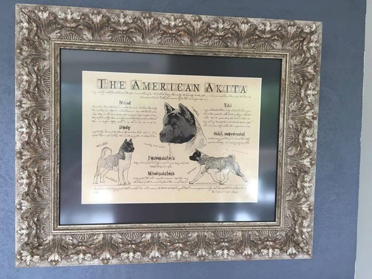 Antique styled dog standard - American Akita by Creativedoglover on Etsy
