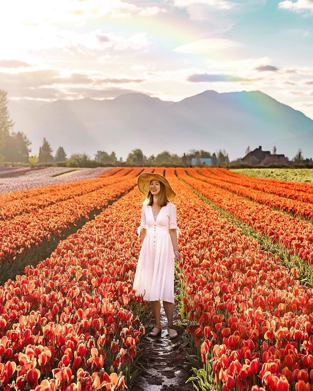 V i v i a n (wisteria_voyage) at the tulip fields of the