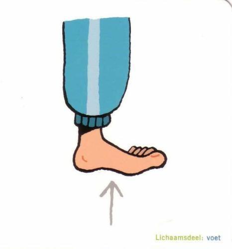 Afbeeldingen lichaam - voet