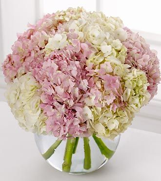 Spring Flowers - FTD Hydrangea Bouquet - DELUXE - Luxuriant pink and white hydrangea blooms crown a clear glass bubble bowl in this lush, overflowing bouquet.  A spectacular arrangement!