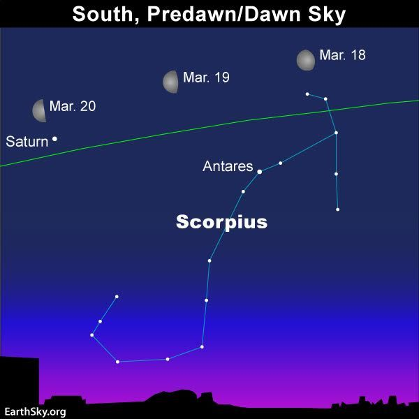 In March, 4 of the 5 bright planets - Venus, Mars, Jupiter and Mercury - are in the evening sky. Saturn is still a morning planet, for now.