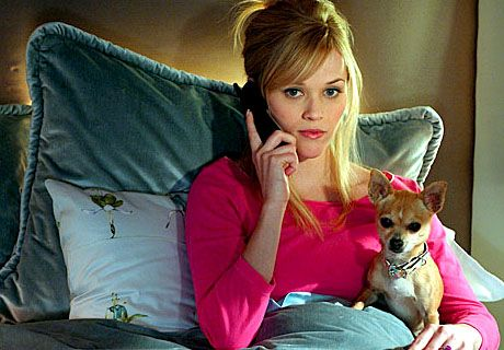 "Elle Woods, ""Legally Blonde"", 2001. http://www.youtube.com/watch?v=3_Bt7dpiyrw"