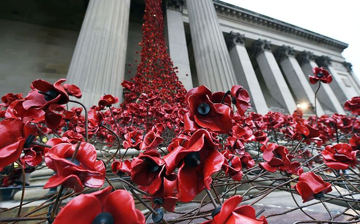 Liverpool's 'Weeping Window' ...♥♥...A photographer captures the installation of ceramic poppies ...♥♥... at St George's Hall in Liverpool ahead of Remembrance Sunday