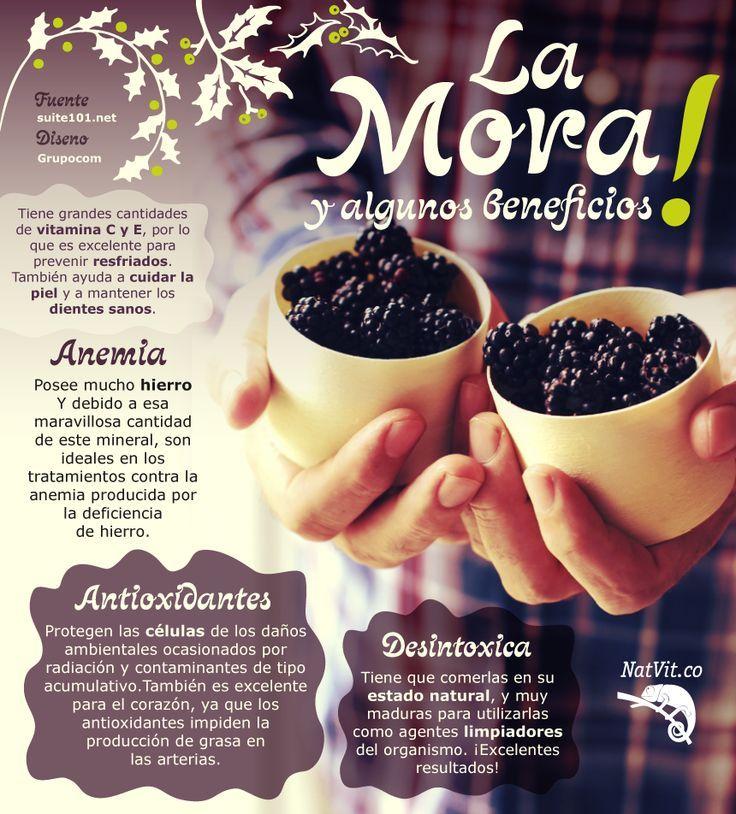 La mora y sus beneficios para la salud - Infografías y Remedios. #infografia #mora #infographic