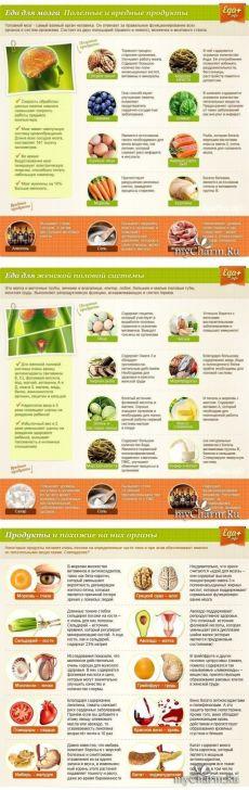 Полезные и вредные продукты для организма: Группа Женское здоровье
