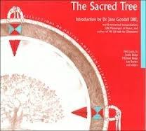 Sacred Tree Reflections on Native American Spirituality