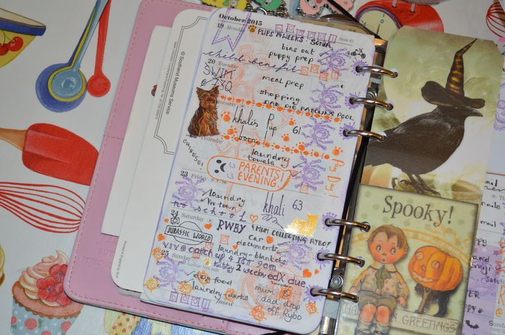 week 43 used filofax planner 2015