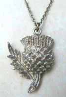 Vintage Scottish Thistle Flower Pendant And Necklace.