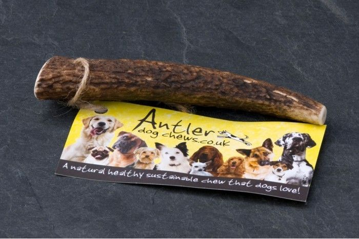 Cherry Tree Country Clothing - Antler Dog Chew Original Small, £4.50 (http://www.cherrytreecountryclothing.com/antler-dog-chew-original-small/)