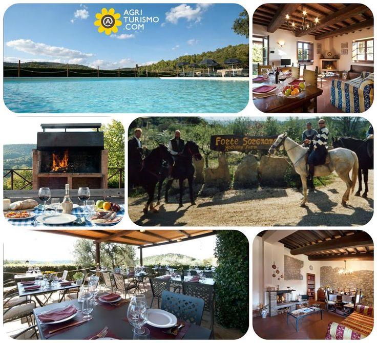 All'Agriturismo Forte Sorgnano, a Gualdo Cattaneo (PG),  trovi sauna, idromassaggio, zona barbecue, corsi di ceramica e cucina in una cornice emozionante!! SCOPRI I NOSTRI PREZZI QUI: http://www.agriturismo.com/dettaglioAgriturismo_alloggi.asp?idLingua=1&id=471 #agriturismo #umbria #italia #italy #vacanze #natura #piscina #cavalli