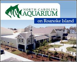 North Carolina Aquarium on Roanoke Island. Visit Fort Bragg Leisure Travel Services for tickets and information. http://www.fortbraggmwr.com/recreation/leisure-travel-services/