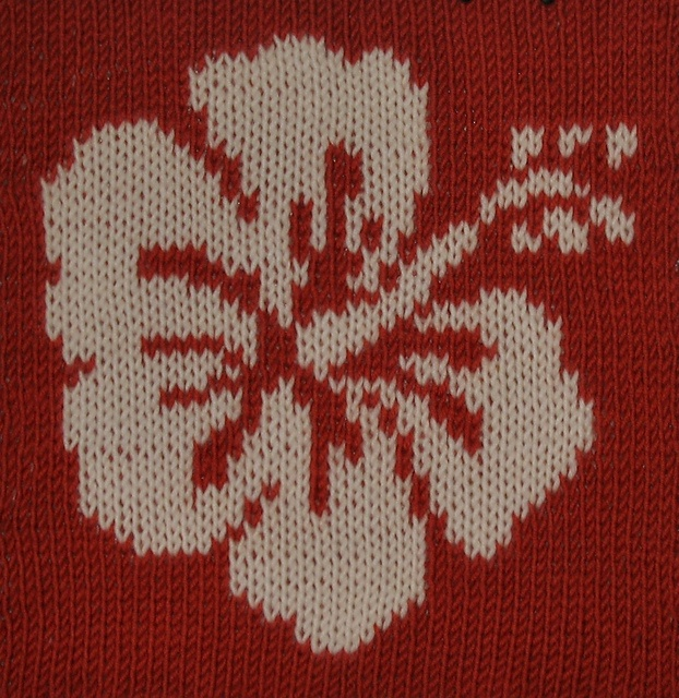 99 best images about diy hawaiian cross stitch on