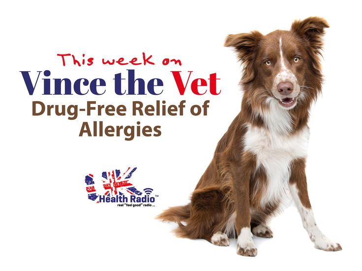 Drug-Free Relief of Allergies in your Pet