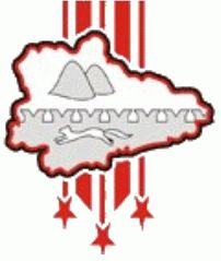 Zauralie Kurgan Primary Logo (2004) - Present. Is this a hockey logo or a graphic from the local weather report?