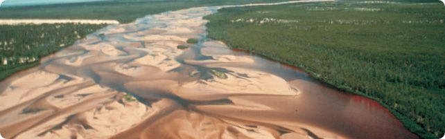 Athabasca Sans Dunes, SK. Complete wilderness, no services, you can only fly in by float plane. Silence.