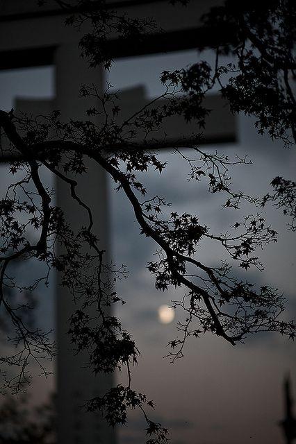 長岡天満宮 Nagaoka Tenmangu Shrine