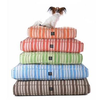Posh Puppy Boutique is a shop for designer dog clothes and accessories - Eco-friendly Classic Stripe Rectangle Bed - Beds, Blankets & Furniture - Pillow Style Beds , pet toys, collars, carriers, treats, stunning bowls, diaper, belly bands, id tags, harnes