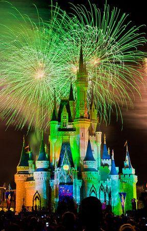 Disney Theme Park Guides for EVERY Resort Woldwide (Disneyland, WDW, Paris, Hong Kong & Tokyo)