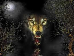 Fierce wolf - the stereotypical villain version. #wolves #scarlettlegacy #bigbadwolf