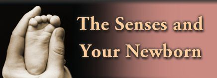 The Senses and Your Newborn: Information and tips about your baby's hearing, vision, sense of taste and smell.